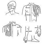 Методика применения сегментарного массажа при лечении бронхиальной астмы.